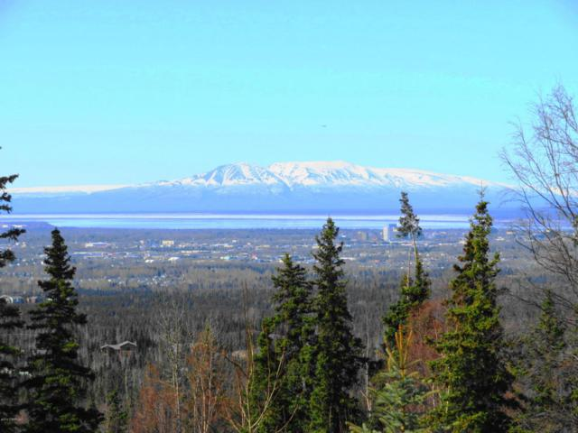 9900 Mccready Circle, Anchorage, AK 99507 (MLS #18-6208) :: RMG Real Estate Network | Keller Williams Realty Alaska Group