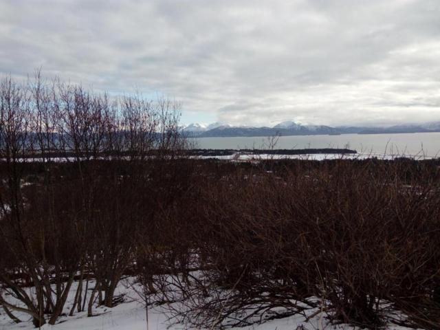 228 Island View Court, Homer, AK 99603 (MLS #18-6215) :: Northern Edge Real Estate, LLC