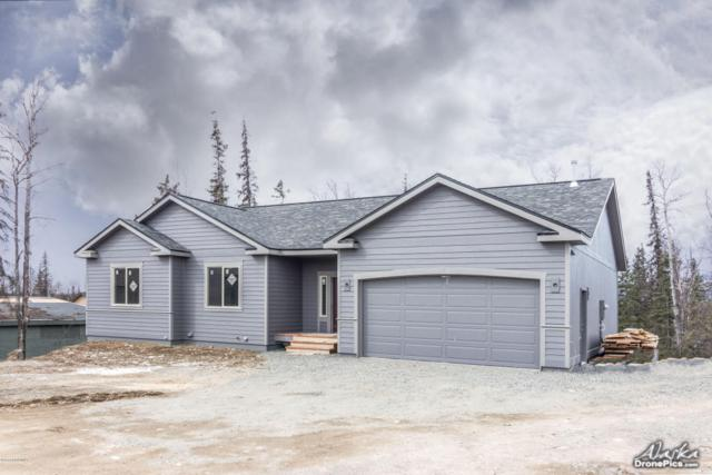 1601 E Gosling Circle, Wasilla, AK 99654 (MLS #18-6216) :: Northern Edge Real Estate, LLC