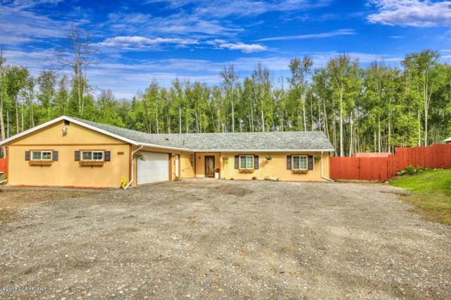 10957 W Hobbit Road, Houston, AK 99623 (MLS #18-6227) :: RMG Real Estate Network | Keller Williams Realty Alaska Group