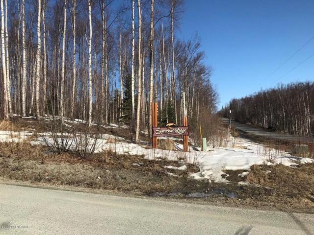 0000 W Sundance Circle, Wasilla, AK 99645 (MLS #18-6281) :: Core Real Estate Group