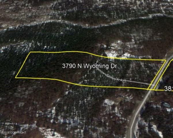 3790 Wyoming Drive, Wasilla, AK 99623 (MLS #18-6301) :: Core Real Estate Group
