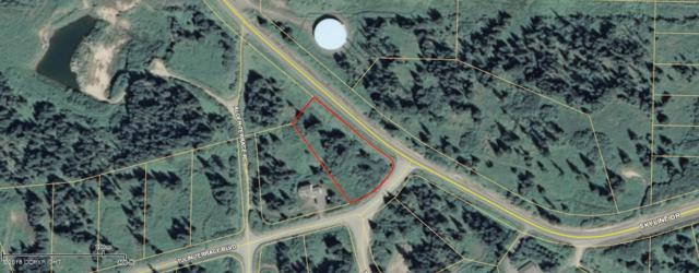 120 Tulin Terrace, Homer, AK 99603 (MLS #18-6355) :: Core Real Estate Group