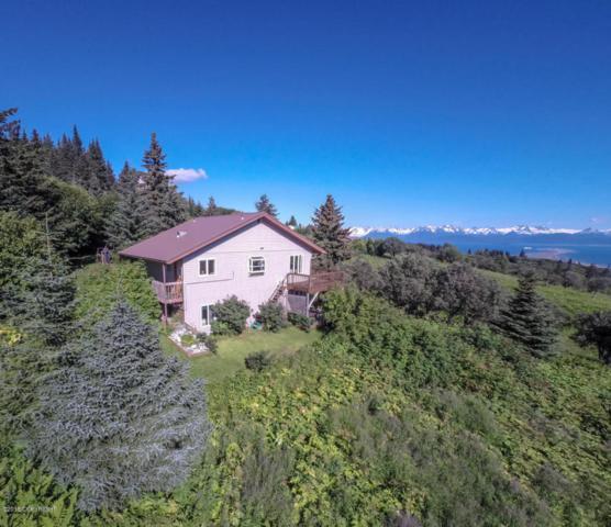 4835 Rosewood Court, Homer, AK 99603 (MLS #18-6587) :: RMG Real Estate Network | Keller Williams Realty Alaska Group