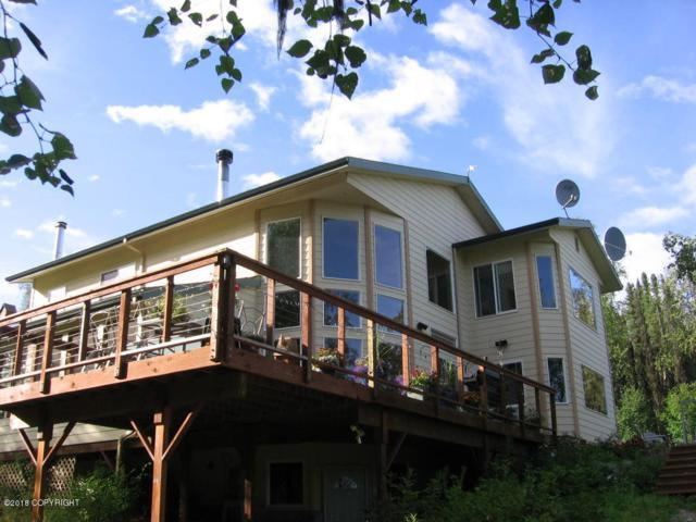 10425 N Hardship Lane, Willow, AK 99688 (MLS #18-686) :: Real Estate eXchange