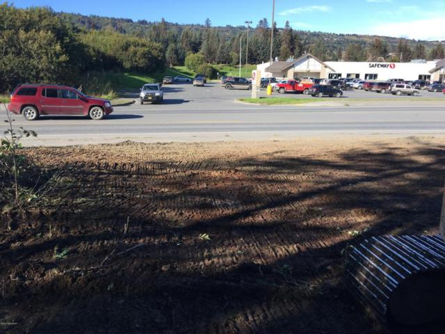 89 Sterling Highway, Homer, AK 99603 (MLS #18-6914) :: Team Dimmick
