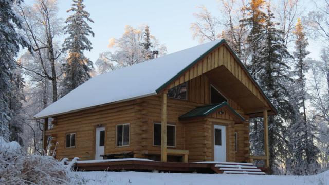 21275 W Tuxedo Avenue, Willow, AK 99688 (MLS #18-704) :: Real Estate eXchange
