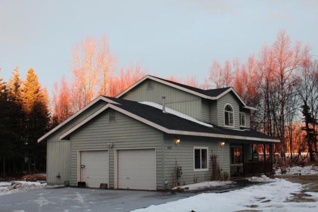 4033 N Snowgoose Road, Palmer, AK 99645 (MLS #18-708) :: Core Real Estate Group