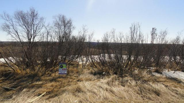 L4 B4 King Salmon Creek Acres, King Salmon, AK 99633 (MLS #18-7155) :: Channer Realty Group
