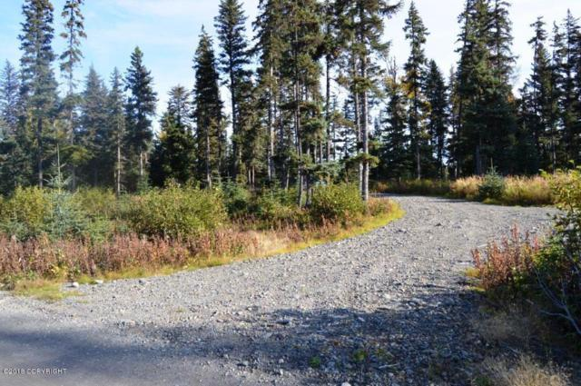 73580 Seabury Road, Anchor Point, AK 99556 (MLS #18-7302) :: Team Dimmick