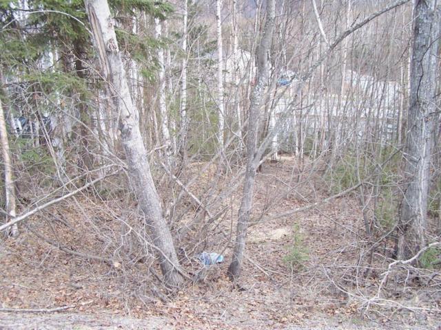 NHN L4 Cloverleaf Street, Chugiak, AK 99567 (MLS #18-7303) :: Northern Edge Real Estate, LLC
