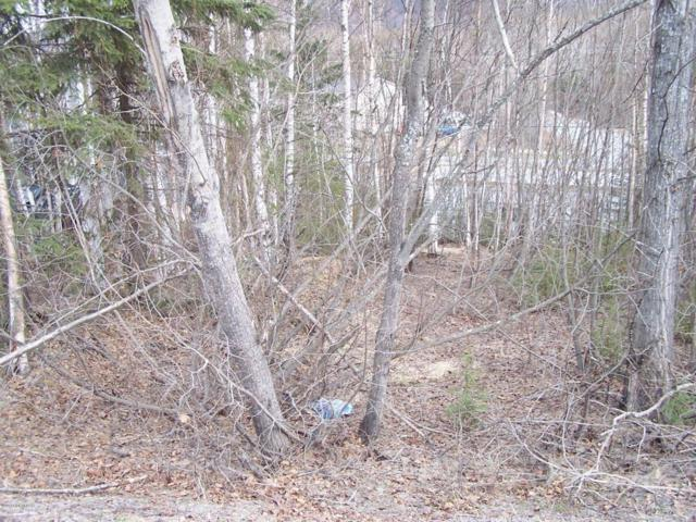 NHN L3 Cloverleaf Street, Chugiak, AK 99567 (MLS #18-7304) :: Northern Edge Real Estate, LLC