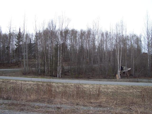 NHN Old Glenn, Chugiak, AK 99567 (MLS #18-7307) :: Northern Edge Real Estate, LLC