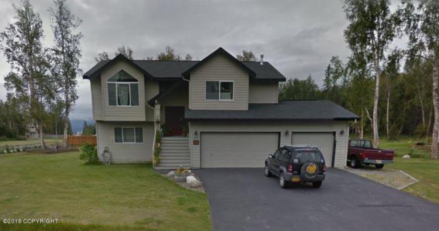 1150 E Hidden Ranch Loop, Palmer, AK 99645 (MLS #18-7337) :: Team Dimmick