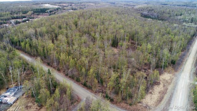 9700 W Carmel Road Road, Wasilla, AK 99654 (MLS #18-7781) :: Channer Realty Group