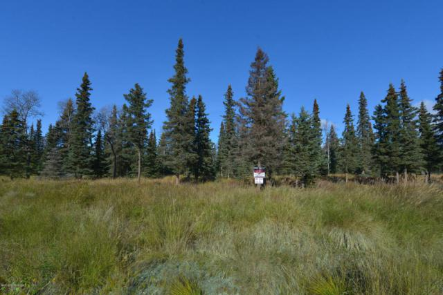 52398 Scenic Breezes Court, Kasilof, AK 99610 (MLS #18-7791) :: Alaska Realty Experts
