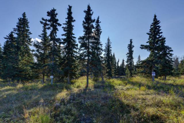 52479 Scenic Breezes Court, Kasilof, AK 99610 (MLS #18-7792) :: Alaska Realty Experts