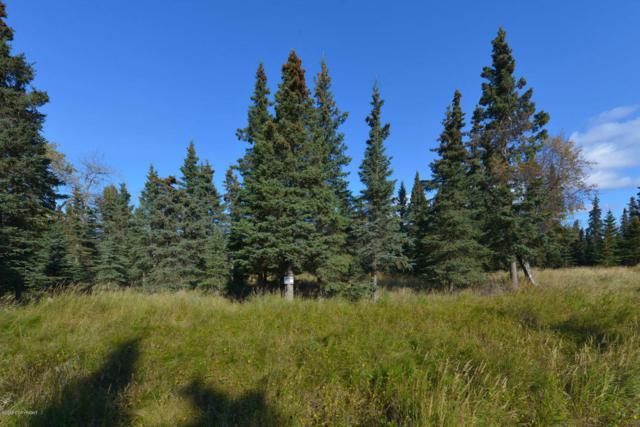 52472 Scenic Breezes Court, Kasilof, AK 99610 (MLS #18-7793) :: Alaska Realty Experts