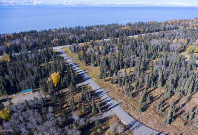 52517 Scenic Breezes Court, Kasilof, AK 99610 (MLS #18-7795) :: Alaska Realty Experts
