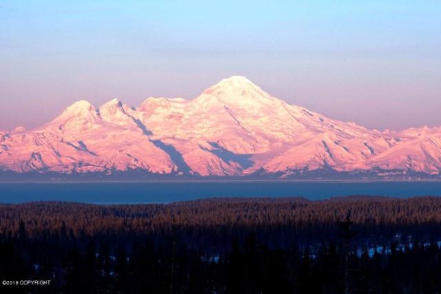 67579 Endless View Loop, Homer, AK 99603 (MLS #18-785) :: RMG Real Estate Network | Keller Williams Realty Alaska Group