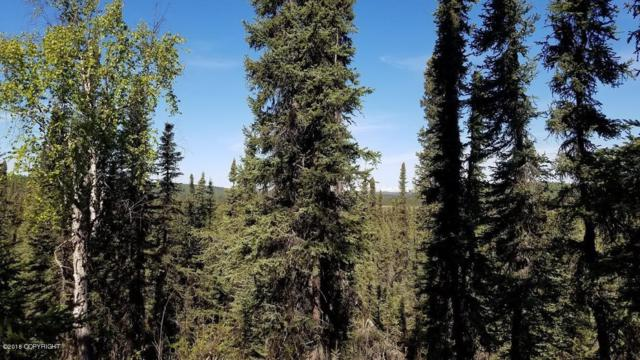 41722 Funny River Road, Soldotna, AK 99669 (MLS #18-7850) :: Team Dimmick
