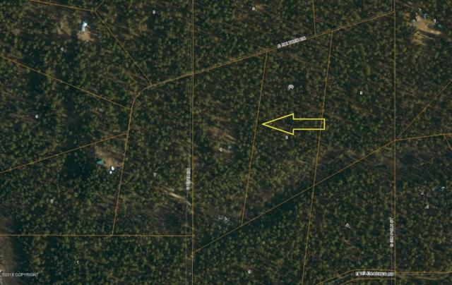 Lt 1 Blk 5 S Vista Drive, Talkeetna, AK 99676 (MLS #18-789) :: Real Estate eXchange