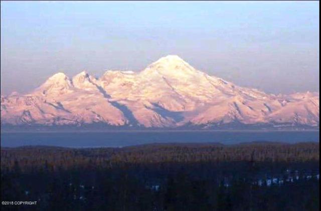 67654 Endless View Loop, Homer, AK 99603 (MLS #18-791) :: RMG Real Estate Network | Keller Williams Realty Alaska Group