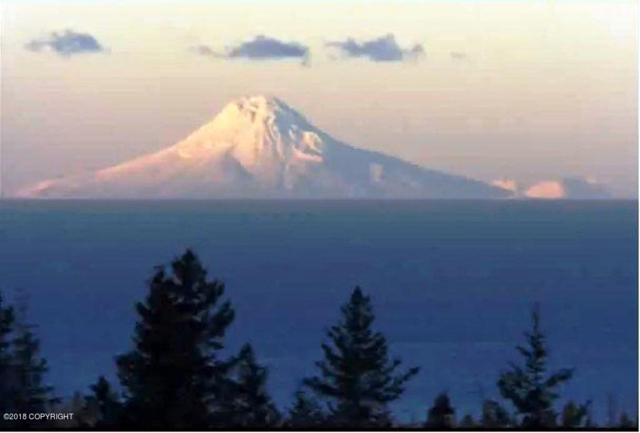 67688 Endless View Loop, Homer, AK 99603 (MLS #18-796) :: RMG Real Estate Network | Keller Williams Realty Alaska Group