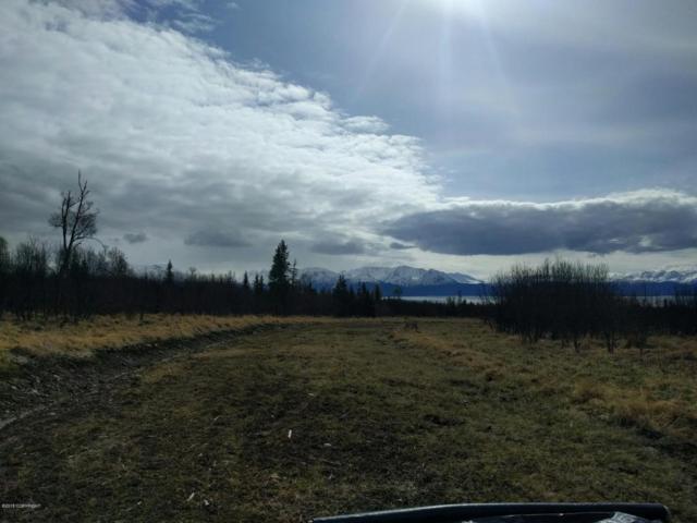 L9 B1 Triple Crown Road, Homer, AK 99603 (MLS #18-806) :: RMG Real Estate Network   Keller Williams Realty Alaska Group