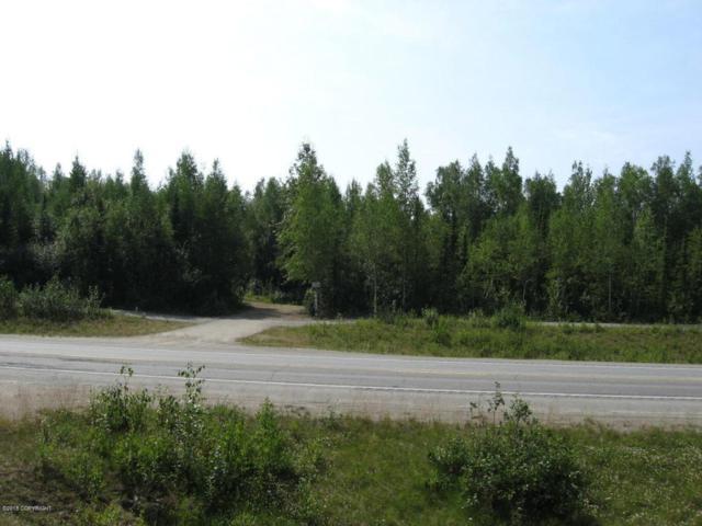 12532 W Parks Highway, Houston, AK 99694 (MLS #18-8066) :: RMG Real Estate Network | Keller Williams Realty Alaska Group