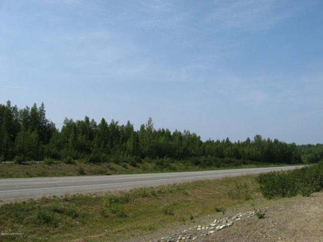 12786 W Parks Highway, Houston, AK 99694 (MLS #18-8068) :: RMG Real Estate Network | Keller Williams Realty Alaska Group