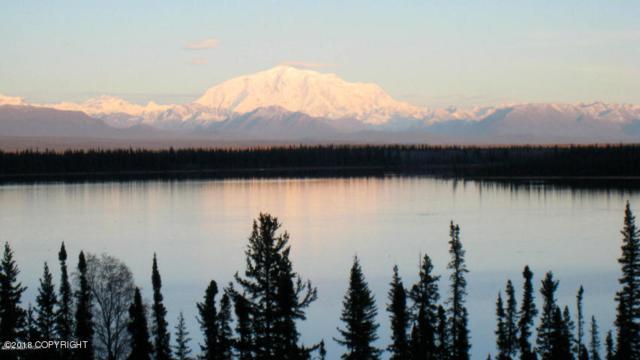 L4 B1 Willow Lake, Copper Center, AK 99573 (MLS #18-8090) :: Team Dimmick