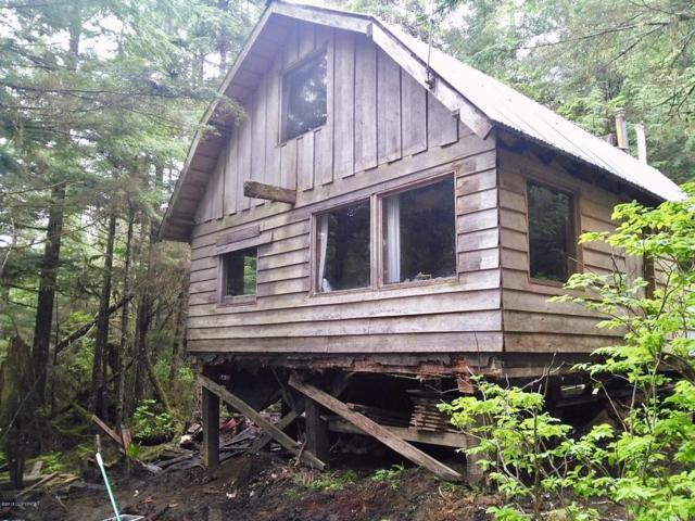 8 Charley Creek Lane, Edna Bay, AK 99950 (MLS #18-8215) :: Team Dimmick