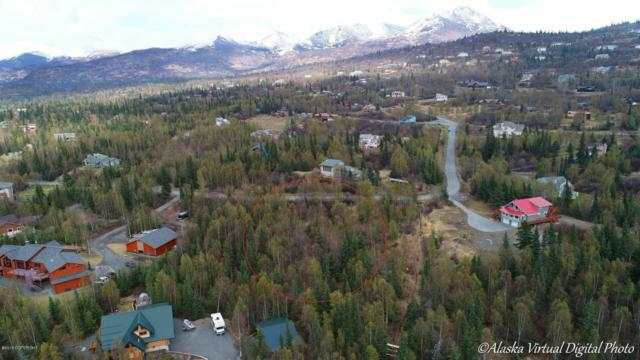 0000 Conifer Street, Anchorage, AK 99507 (MLS #18-8233) :: Team Dimmick