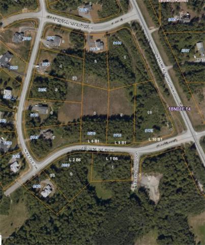9175 E Alpine View Drive, Palmer, AK 99654 (MLS #18-8252) :: Team Dimmick