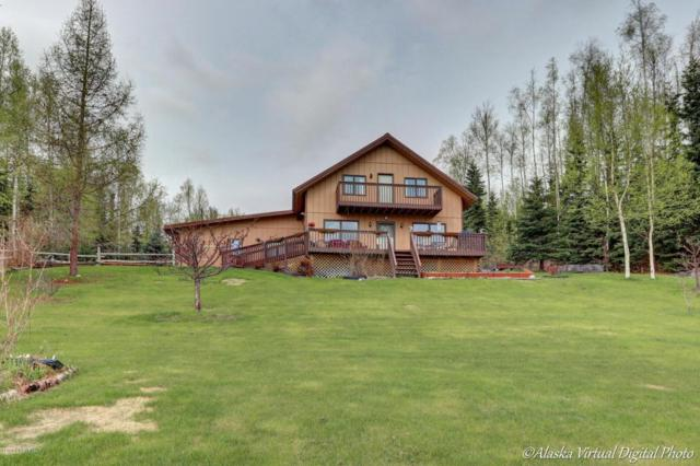 5527 S Garrett Drive, Big Lake, AK 99652 (MLS #18-8255) :: Team Dimmick