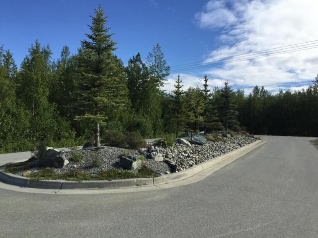 NHN E Alpine View Drive, Palmer, AK 99645 (MLS #18-8285) :: Northern Edge Real Estate, LLC