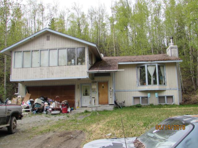1001 W Lone Cub Drive, Wasilla, AK 99654 (MLS #18-8287) :: Northern Edge Real Estate, LLC