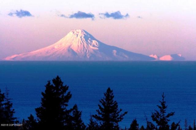 67733 Endless View Loop, Homer, AK 99603 (MLS #18-832) :: RMG Real Estate Network | Keller Williams Realty Alaska Group