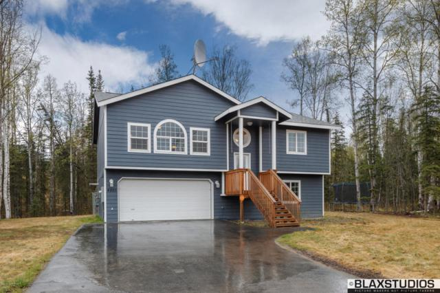 4825 W Hidden Paradise Road, Wasilla, AK 99623 (MLS #18-8371) :: Channer Realty Group