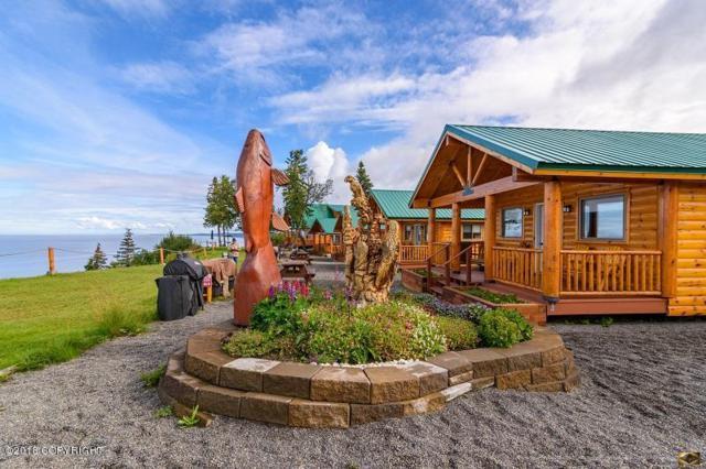 14823 Homestead Drive, Clam Gulch, AK 99568 (MLS #18-8411) :: RMG Real Estate Network | Keller Williams Realty Alaska Group