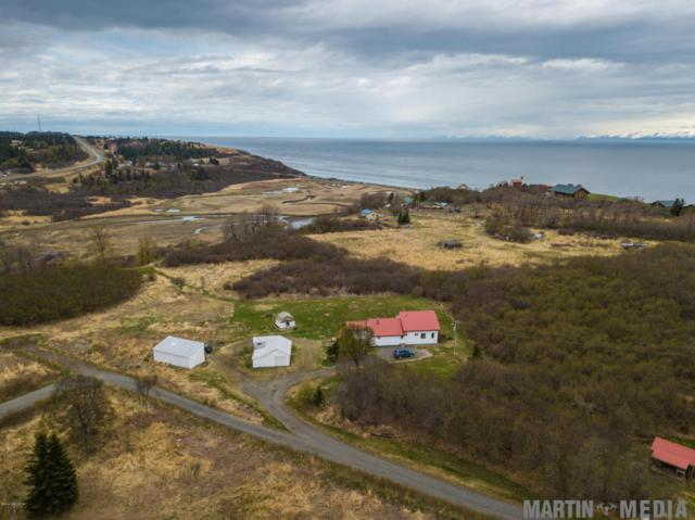 16355 Erickson Street, Ninilchik, AK 99639 (MLS #18-8625) :: Channer Realty Group
