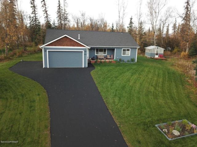 6865 W Moose Ridge Circle, Wasilla, AK 99623 (MLS #18-8728) :: Channer Realty Group