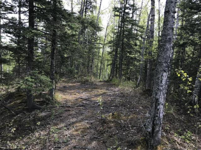 2061 N Cottonwood Loop, Wasilla, AK 99654 (MLS #18-8734) :: Channer Realty Group