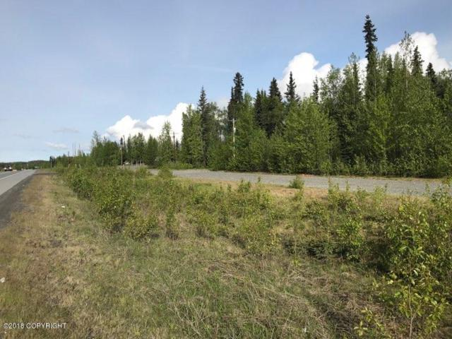 41826 Sterling Highway, Soldotna, AK 99669 (MLS #18-8957) :: Core Real Estate Group