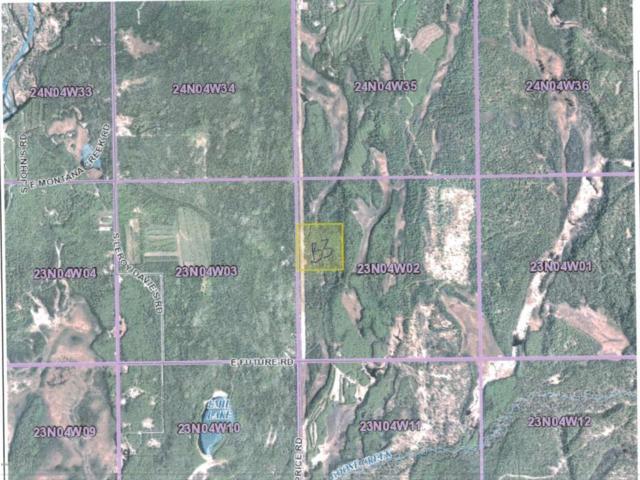 B003 No Road, Talkeetna, AK 99676 (MLS #18-906) :: Real Estate eXchange