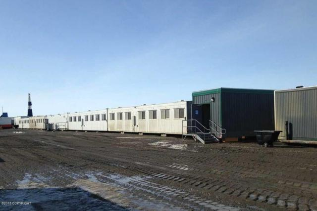 000 Dalton Highway, Prudhoe Bay, AK 99734 (MLS #18-9124) :: Core Real Estate Group