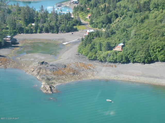 Tr A Halibut Cove, Homer, AK 99603 (MLS #18-9380) :: Channer Realty Group