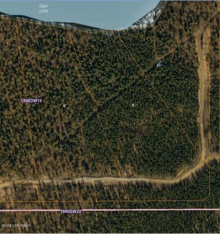 L5 Houston Lake Drive, Houston, AK 99652 (MLS #18-9976) :: RMG Real Estate Network | Keller Williams Realty Alaska Group