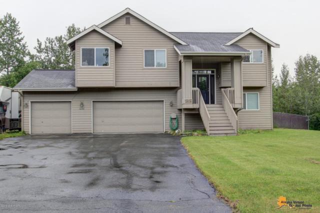 1294 E Fairview Meadows Avenue, Wasilla, AK 99654 (MLS #19-10040) :: RMG Real Estate Network   Keller Williams Realty Alaska Group